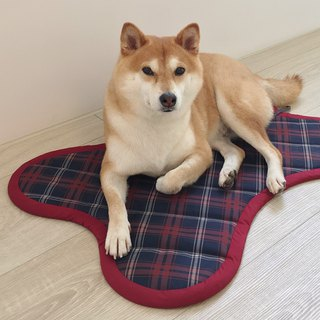 Dog - Fashion Pet Mat (Grid)