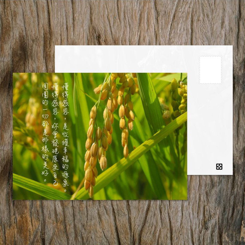 Postcard / Know Grateful / Buy 10 Get 1 / Taiwan Positive Energy Corner Inspirational Series