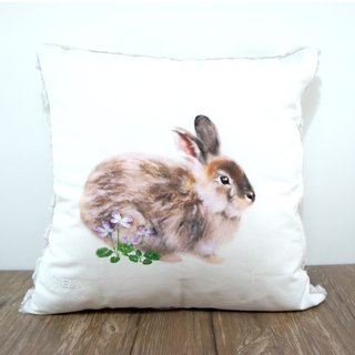 Taiwan Hare Pillow (Taipei Leek) Female Rabbit -50cm
