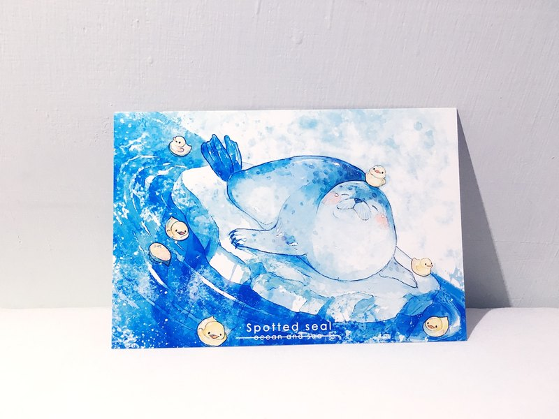 Sea and Sea Season Two Harbor Seal / double-sided postcard