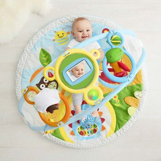 American Skip Hop Discovery Series - Wonderful Arch Activity Mat