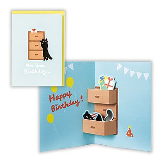 The cat hides in the drawer and surprises you [Hallmark-three-dimensional card birthday greeting]