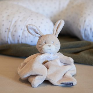 Rabbit Cuddly Toy (Lenny)