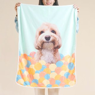 Customized handmade pet blanket cold air blanket