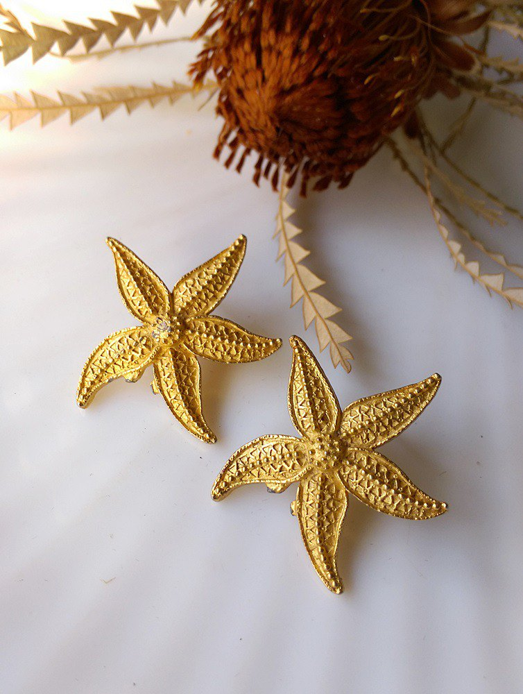 [Western antique jewelry / old age] JJ marine life starfish metal needle earrings