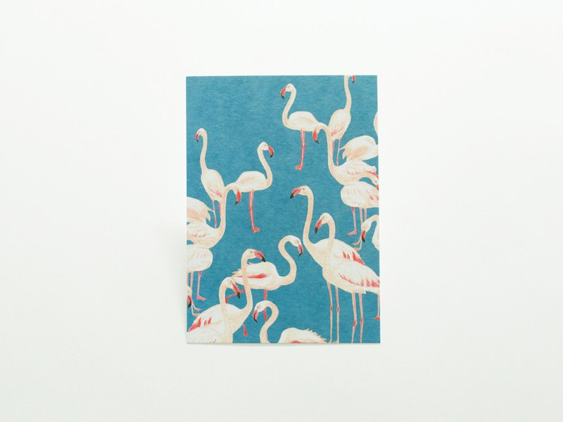 post card (flamingo)