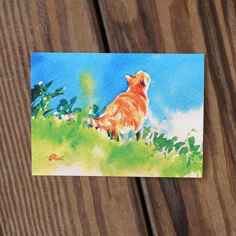 水彩繪毛孩系列明信片 - 綠坡仰望