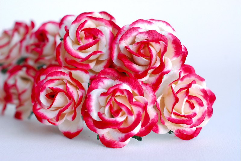 Paper Flower, 25 pieces mulberry rose size 3.5 cm. curve petals, red brush white
