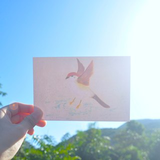 Bird Day and - Sparrow relax time postcard