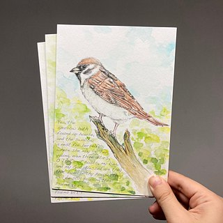 Hand painted watercolor sparrow postcard