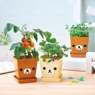 [Rilakkuma Lala Bear Family] Garden Plant Pot / Milk Bear (Two)