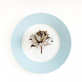 Corsage : Antique rose. (Light blue)
