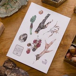 antlers and berries - forest collection postcard