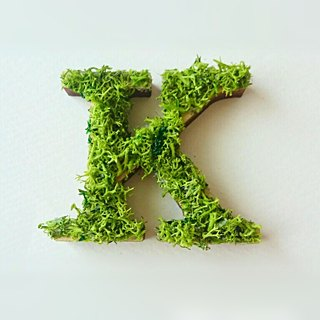 "Wooden alphabet objects (Moss) 5cm ""K"" × 1 point"