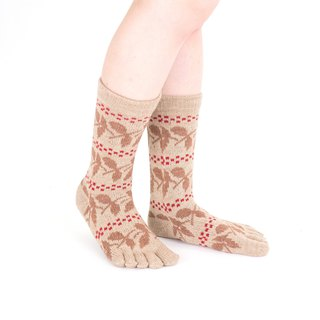 nanten pattern 5toe socks