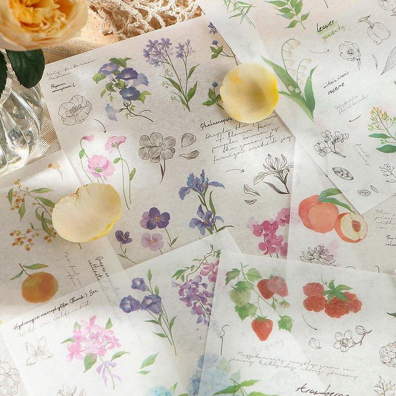 InfeelMe暖空和紙貼紙素材【植物觀察手記】手帳裝飾貼紙