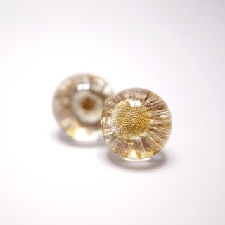 A Handmade earrings-white inflorescences Shuijingjiao