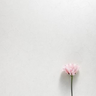 Blank philosophy - photo background board