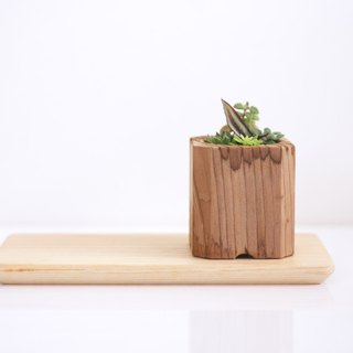 Set of  Wooden Plant Pot