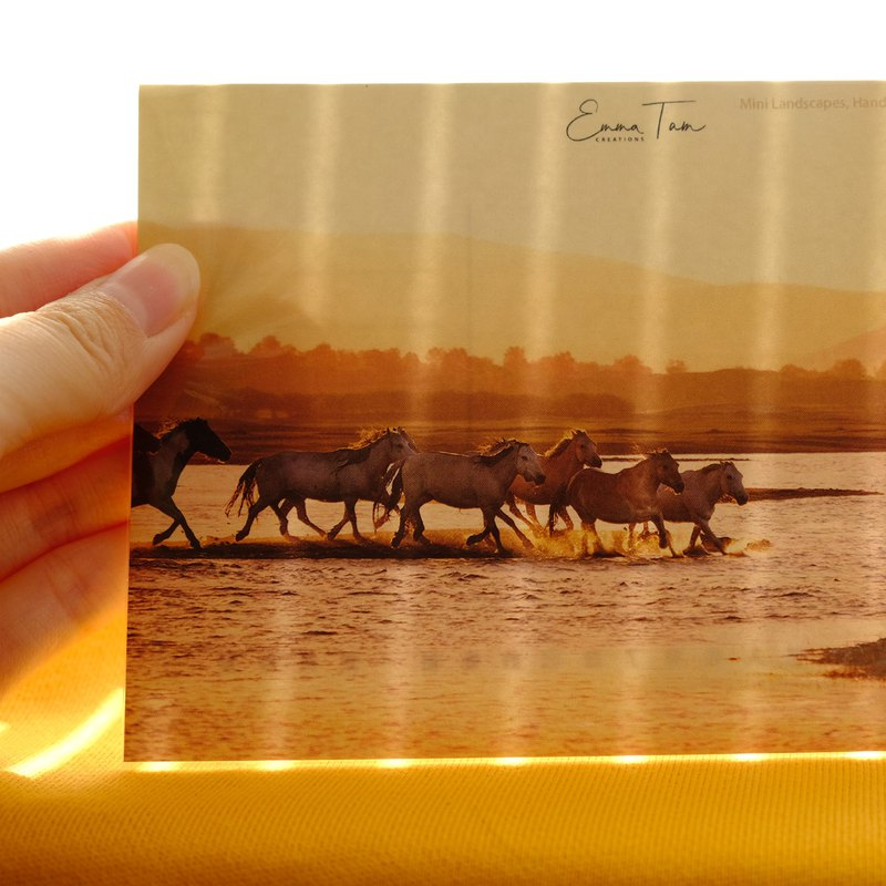 [Winning the waves] The card postcards on both sides of the ink-absorbing cotton paper