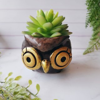 010 Xenon Eagle │Yoshino Hawk x Owl Pottery Flower Pure Handmade Design Succulent Healing Cute Unique Gift