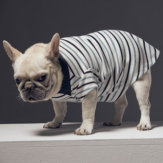 Shirt collar long sleeves open striped POLO pet clothing - wide version