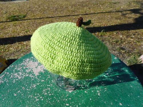 Adult green apple beret