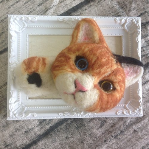 Cat slave series cute cats three cats with photo frames