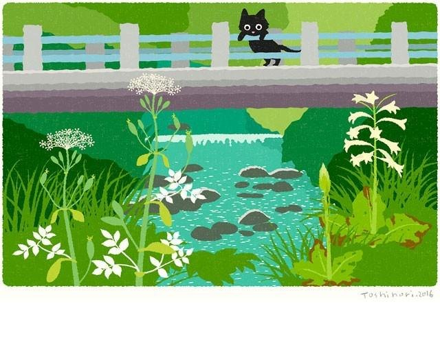A3 illustration sheet blooms beneath the bridge