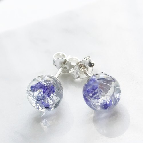 Real flower Purple Gypsophila sphere glass S925 silver earrings