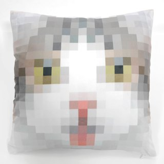 Tabby & Calico Cat Cushion Cover