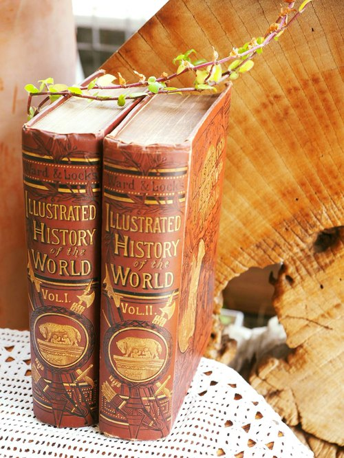 Hardcover embossed world history book a total of two volumes of JS