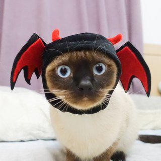 Little devil pet cat dog hat hat * S number