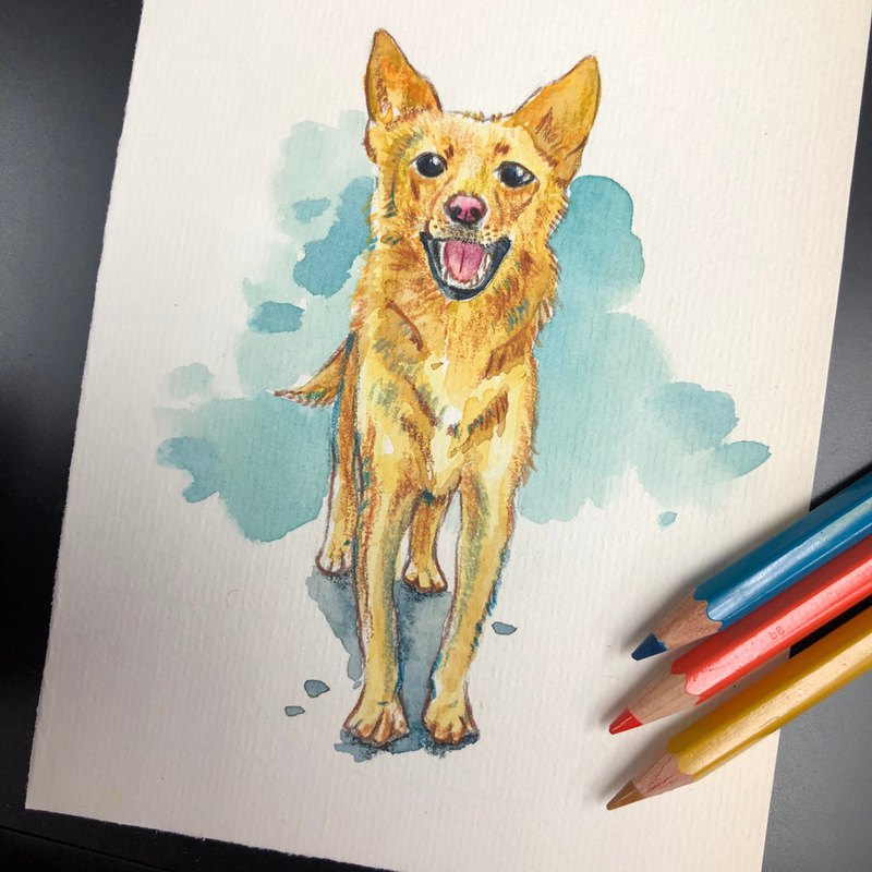 Lets draw your pets