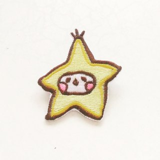 Star Embroidered Patches
