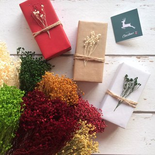 Free Packaging - Plants Christmas Gifts - Hand Cream Set - Exchange Gifts New Year Gifts