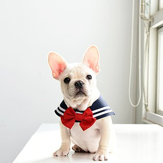 Sailor Scarf - Classic - includes an interchangeable tie (bowtie or sailor tie)