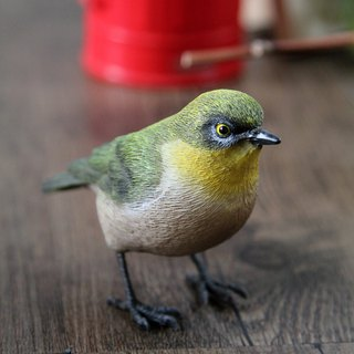 SUSS Japan Magnets healing series green embroidered eye / white-eye bird echo needle iron / table decoration / stationery