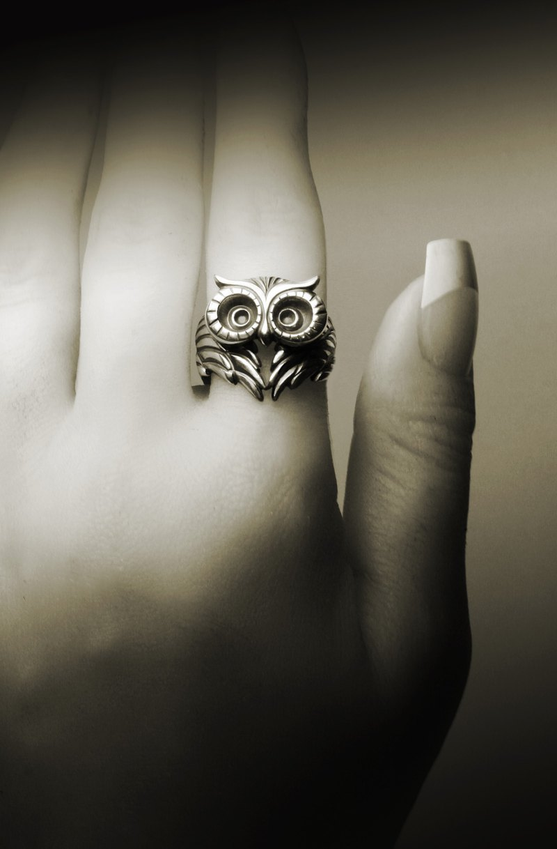 Owl Love Wings Silver Ring