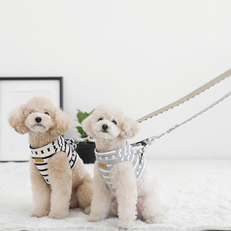 Korean dog chest strap (with leash)