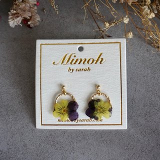 Purple and Yellow Viola Tricolor Earrings