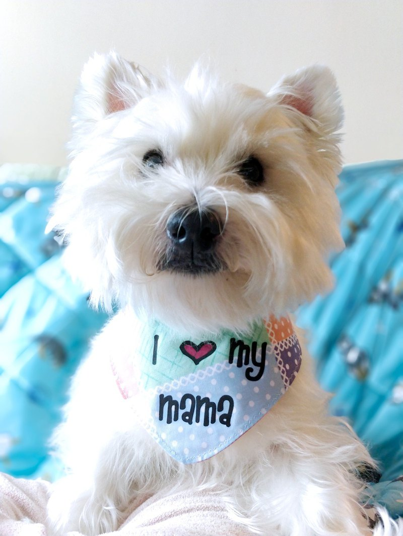 I love mom pet cat dog scarf neckwear mother's day choice