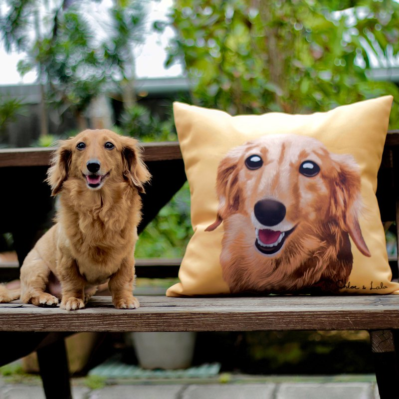 Customized pet head pillow | Draw your dog cat cat pillow