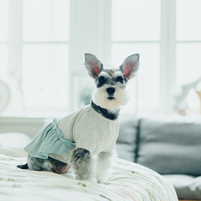 [Tail and Me] Pet Clothes Ruffle Top White Green