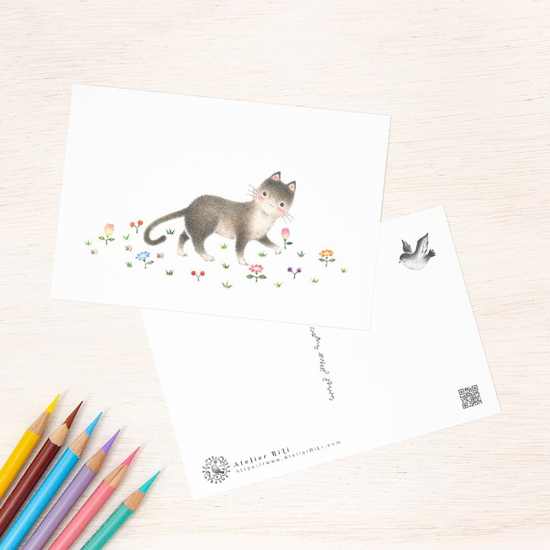 "Set of 5 sheets. Like a picture book. Postcard ""cat cat Leto's walk"" PC-264"