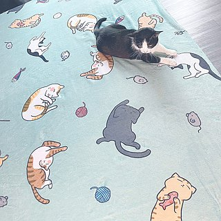[Customer] There is a cat slave random blanket illustration blanket / air conditioning blanket / random blanket / blanket / quilt