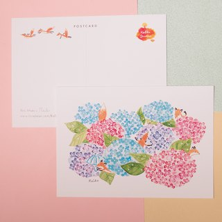 Fox's Hydrangeas hide and seek │ postcards