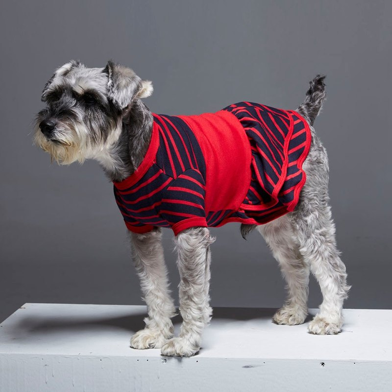 Retro round neck drop stitching modeling pet clothing