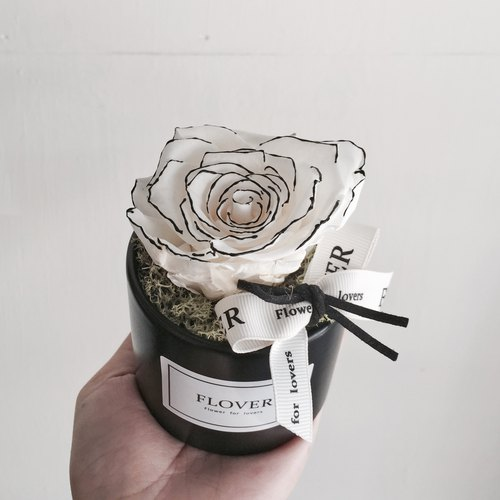 Chanel Rose immortality potted flowers