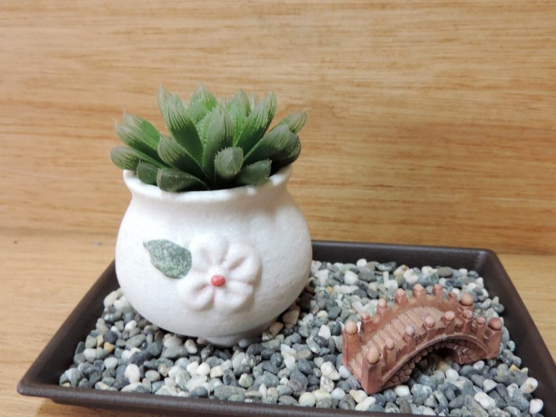 Japanese landscaping succulents
